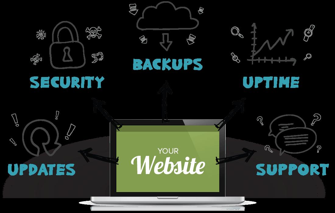 Website Care Plan